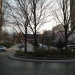 ペンシルバニア大学内の景色